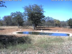 view from Sophienhof Lodge Waterhole on 2018-06-04
