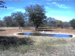 view from Sophienhof Lodge Waterhole on 2018-06-09