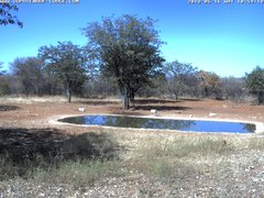 view from Sophienhof Lodge Waterhole on 2018-06-16