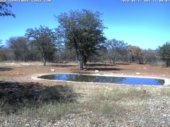 view from Sophienhof Lodge Waterhole on 2018-06-17