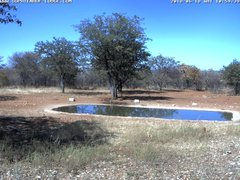 view from Sophienhof Lodge Waterhole on 2018-06-18