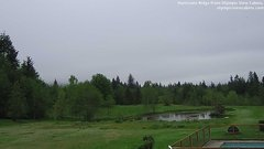view from Olympic View Cabins Hurricane Ridge Cam on 2018-05-16