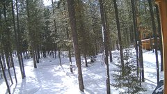 view from Cabin on 2018-03-05