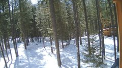 view from Cabin on 2018-03-10
