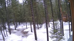view from Cabin on 2018-03-14