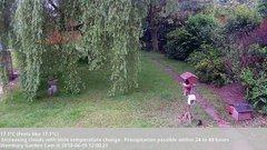 view from Wembury, Devon. Garden Cam on 2018-06-15