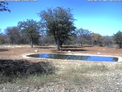 view from Sophienhof Lodge Waterhole on 2018-06-19