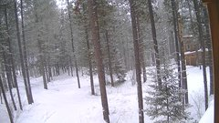 view from Cabin on 2019-02-08