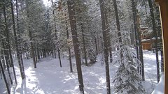 view from Cabin on 2019-02-09