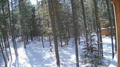 view from Cabin on 2019-02-10