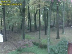 view from Sparta WX on 2018-10-29