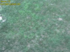 view from Sparta WX on 2019-08-06