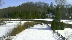 view from YardCam on 2019-01-04