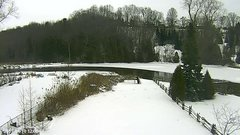 view from YardCam on 2019-01-10