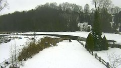 view from YardCam on 2019-01-15