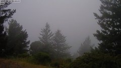 view from Kings Mountain on 2019-08-19
