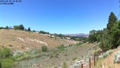 view from Rosewood on 2019-06-23