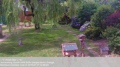 view from Wembury, Devon. Garden Cam on 2019-07-17