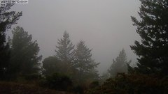 view from Kings Mountain on 2019-12-04