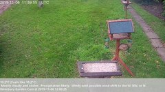view from Wembury, Devon. Garden Cam on 2019-11-06