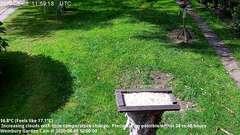 view from Wembury, Devon. Garden Cam on 2020-08-08