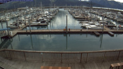 view from Seward Harbor on 2020-07-26