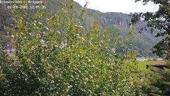 view from Webcam in Bad Schandau Sächsische Schweiz on 2021-07-24