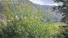 view from Webcam in Bad Schandau Sächsische Schweiz on 2021-07-27